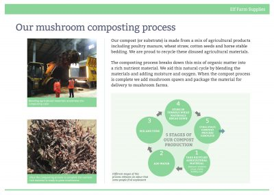 Our mushroom composting process, August 2016